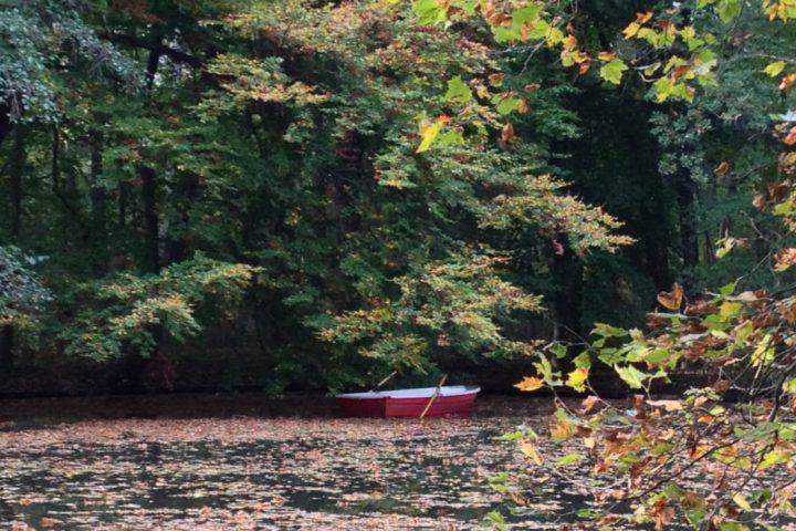 """Der Herbst ist da – Kaffee und Spaziergang am """"Neuer See"""""""