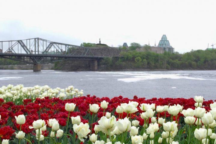 Ottawa – Von Bieberschwänzen und kulturellen Highlights