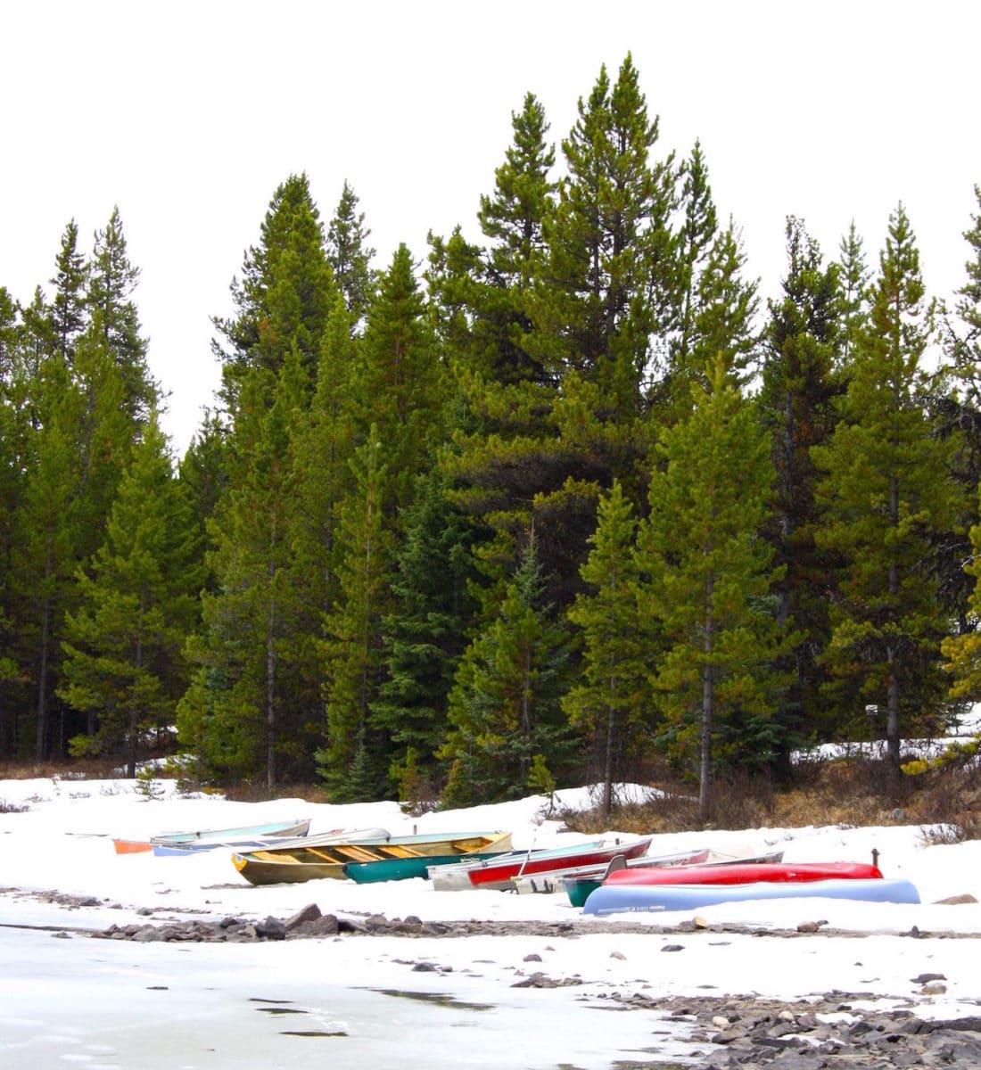 Winter im Jasper Nationalpark Kanada - Reisebericht und Foto von CicoBerlin