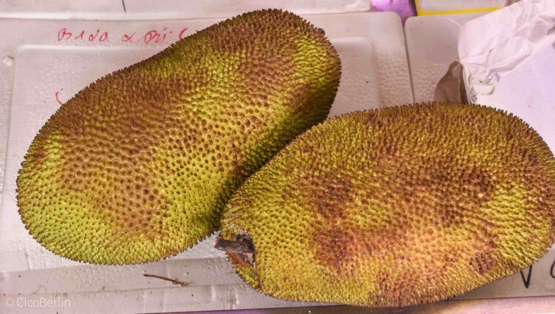 Dong Xuan Center Frucht Durian