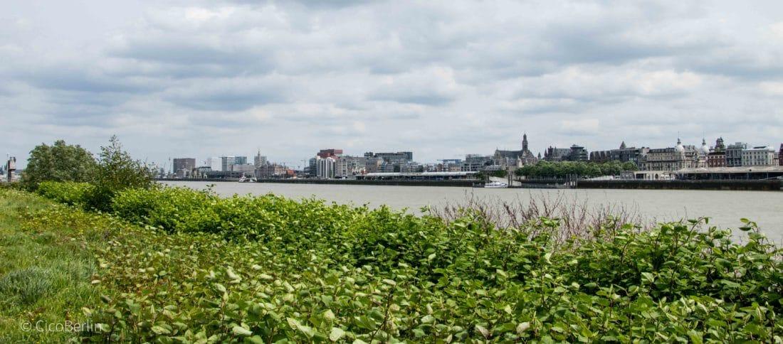 Ein Tag in Antwerpen
