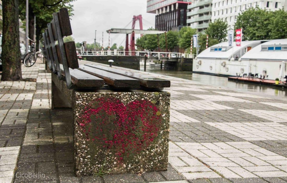 Ein Tag in Rotterdam