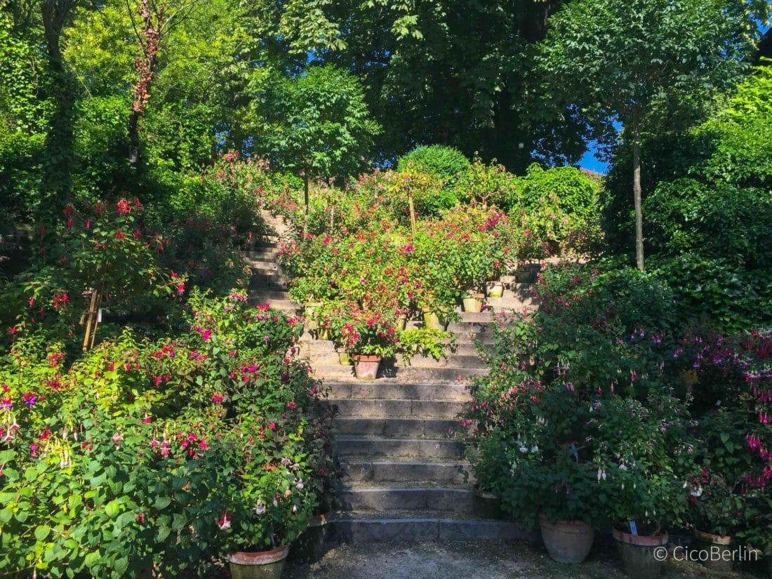 Basel Merian Garten, Top Spots Basel