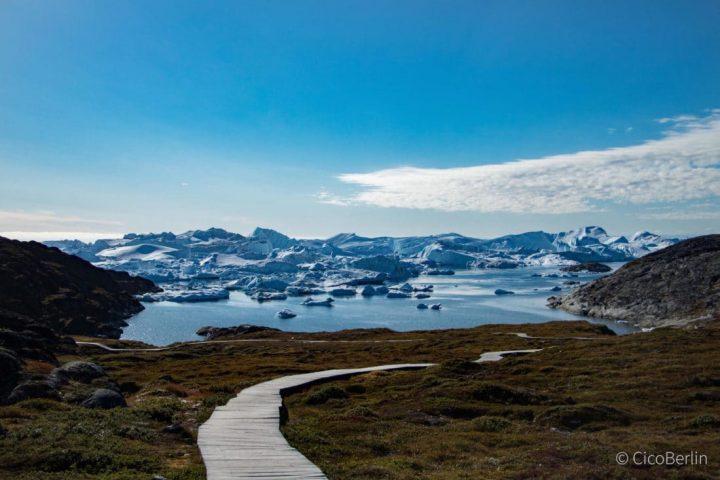 Streicheln verboten –  was du in Ilulissat tun und lassen solltest
