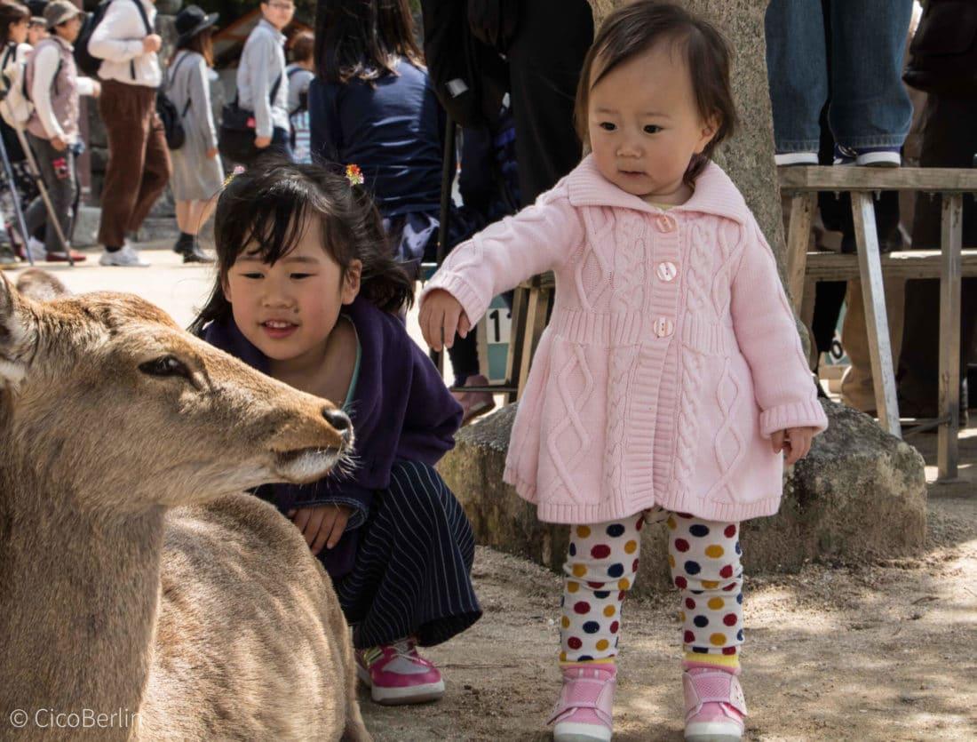 Ein Tag Miyajima, Foto und Bericht von CicoBerlin