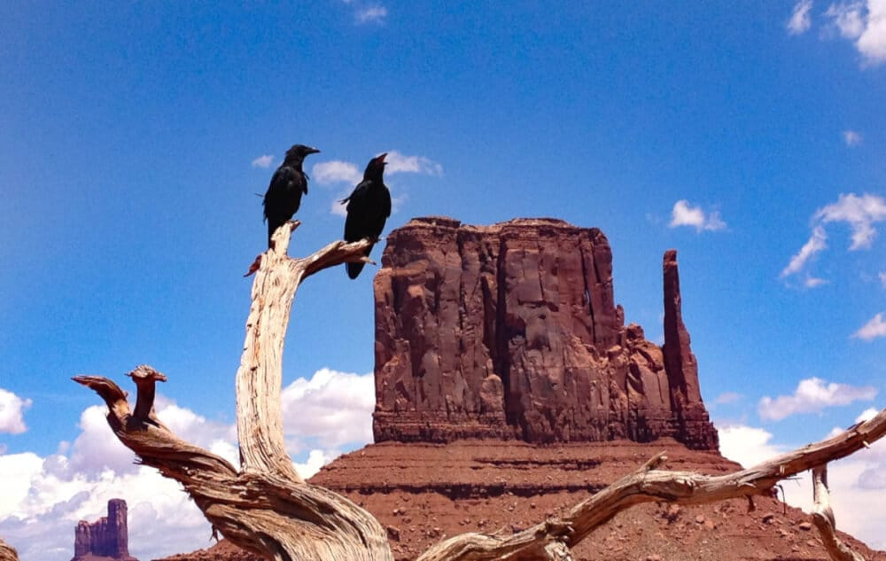 Road Trip durch die USA - das Monument Valley