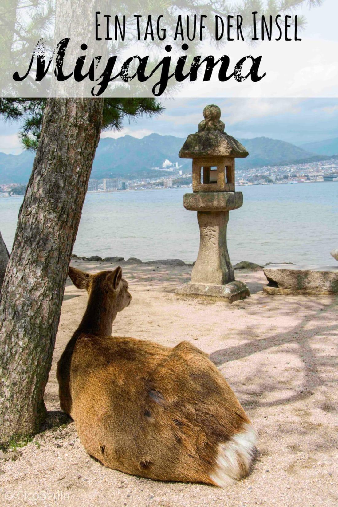 Ein Tag Miyajima, Reisetipps von CicoBerlin