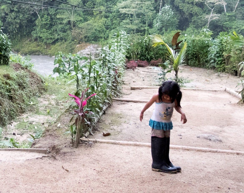 Sehenswürdigkeiten Ecuador Reise_Da waechst Du noch rein