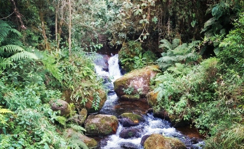 Die schönsten Wanderrouten in Kolumbien gibt es auf PASSENGER X_ Choachi
