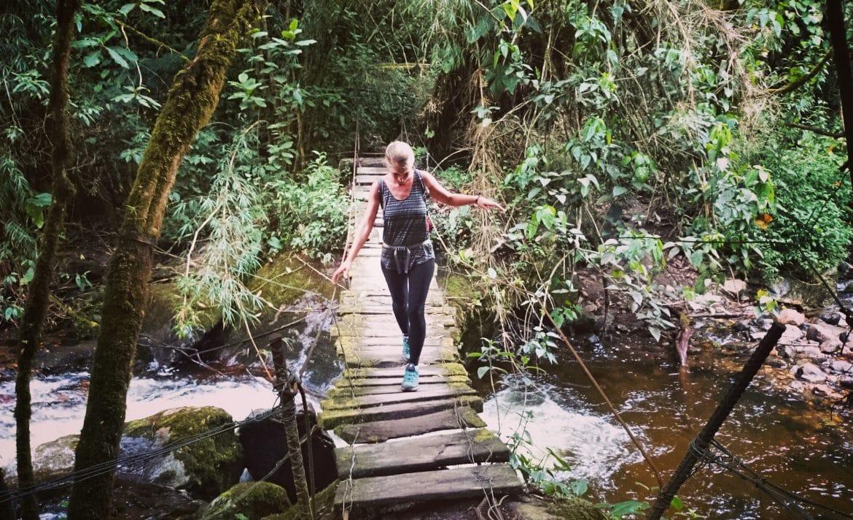 Die schönsten Wanderrouten in Kolumbien_Salento