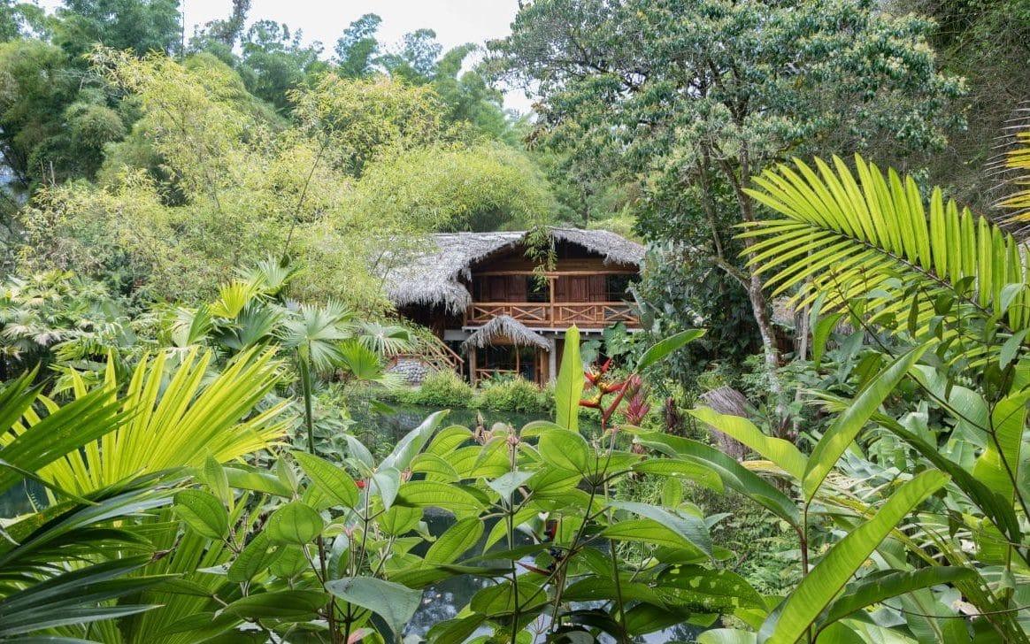 Die beste Unterkunft im Nebelwald von Mindo (Ecuador) verrät dir PASSENGER X