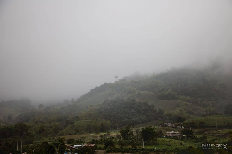 Der Nebelwald in Ecuador ist ein ganz besonderer Ort. Auf PASSENGER X erfährst du warum sich eine Reise nach Mindo lohnt.