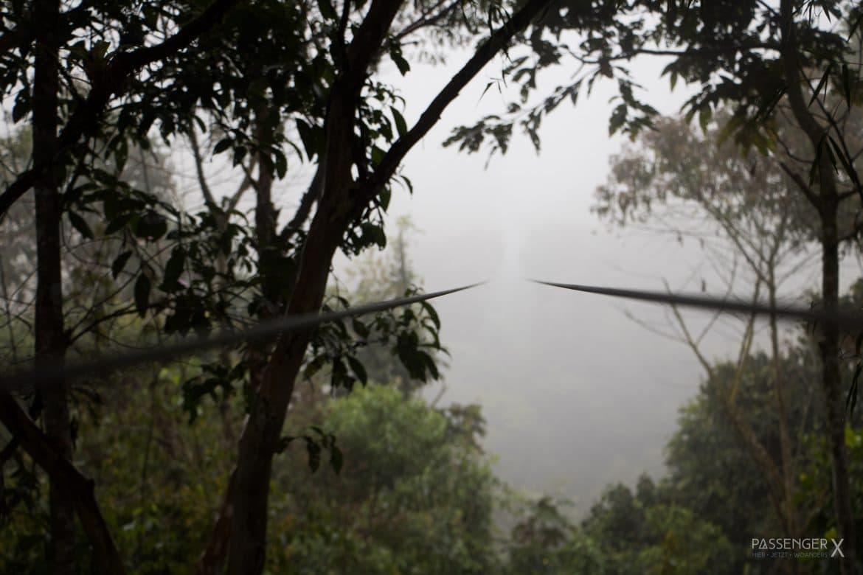 Ziplining durch einen Nebelwald ist ein besonderes Abenteuer. PASSENGER X verrät dir wie es ist, was es kostet und wo du es machen kannst.