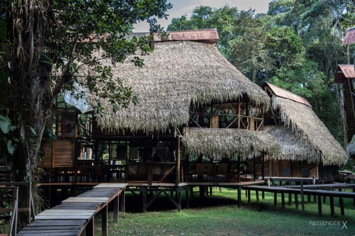 Schlechte Laune, gruseln und verlieben im Dschungel von Ecuador