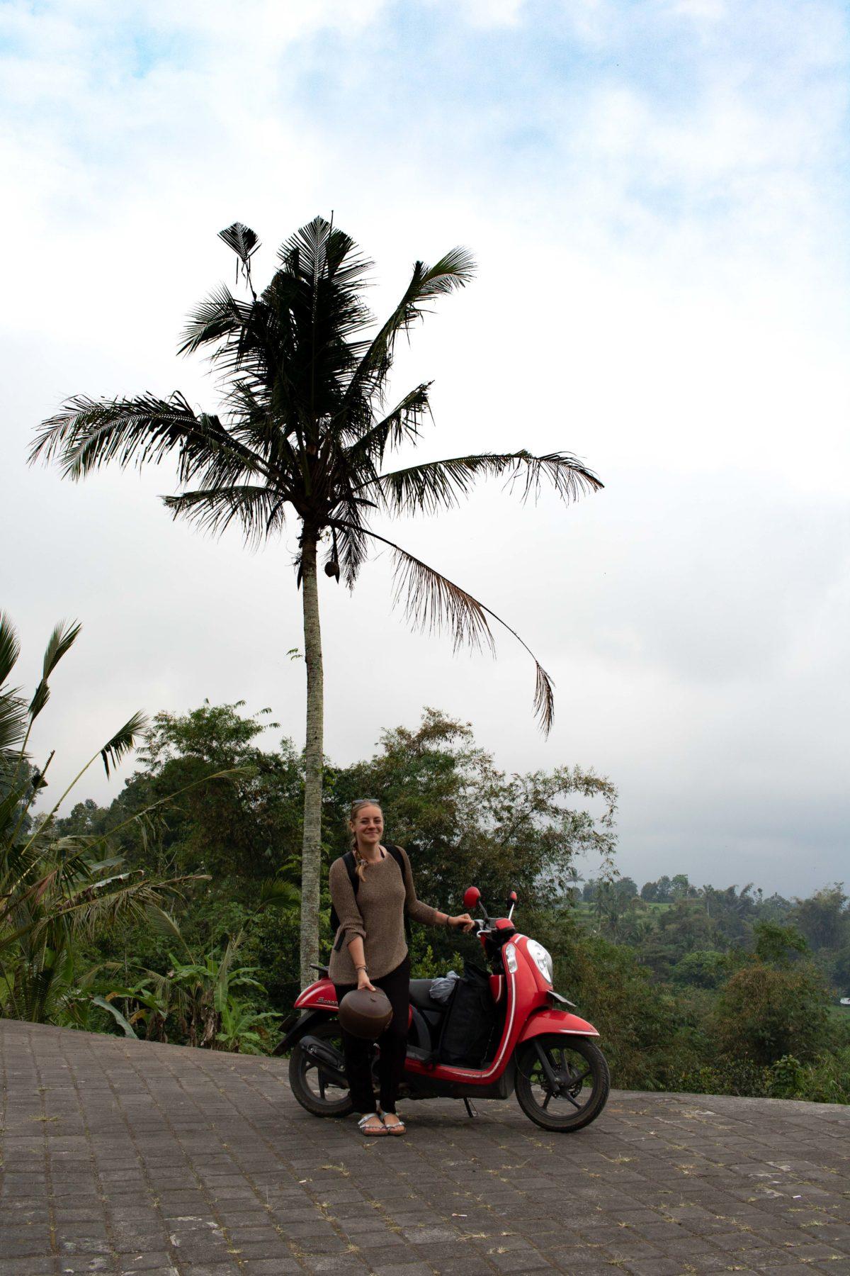 Im Paradies auf Bali? Ein Reisebericht von PASSENGER X