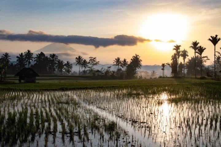 Bali – Zwiegespalten zwischen Paradies und Müllkatastrophe