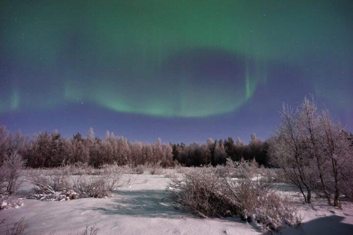 Nordlichter beobachten in Lappland – wann, wo und wie du sie in Rovaniemi sehen kannst