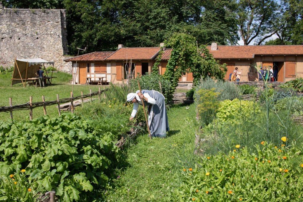 Nationalpark Gauja per Road Trip - Burg Cesis -Artikel von PASSENGER X