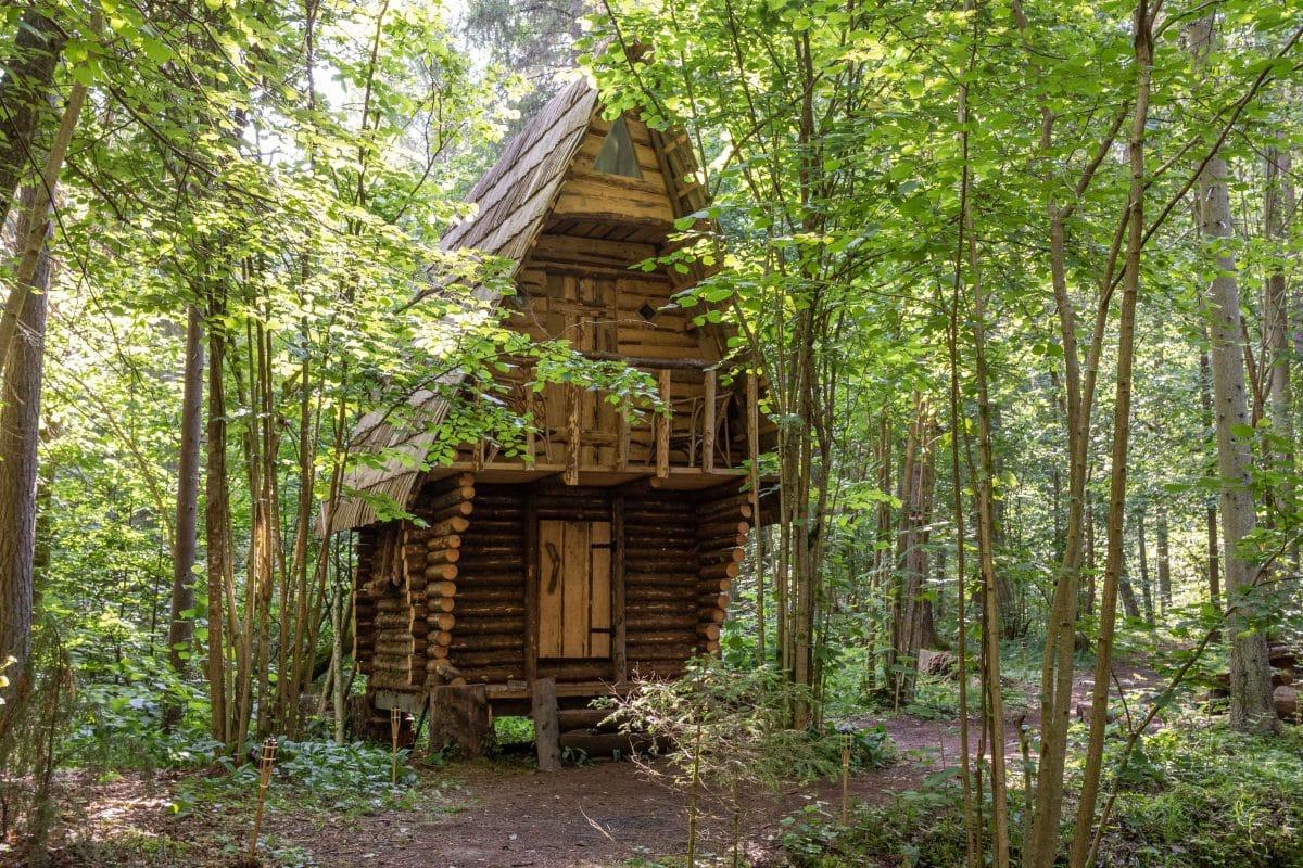 Lettland Sehenswürdigkeiten - Nationalpark Gauja per Road Trip - Cecilu Nature Trail / Cecili Nature Trail -Artikel von PASSENGER X