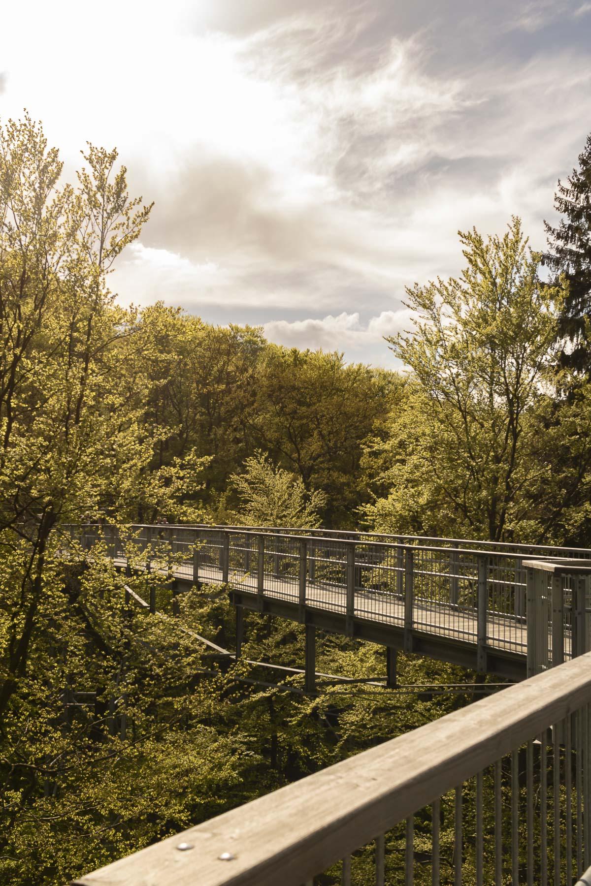Die besten Harz Sehenswürdigkeiten