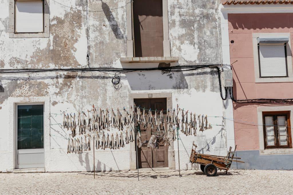 Wild Camping Portugal - Road Trip Route & Tipps für Peniche