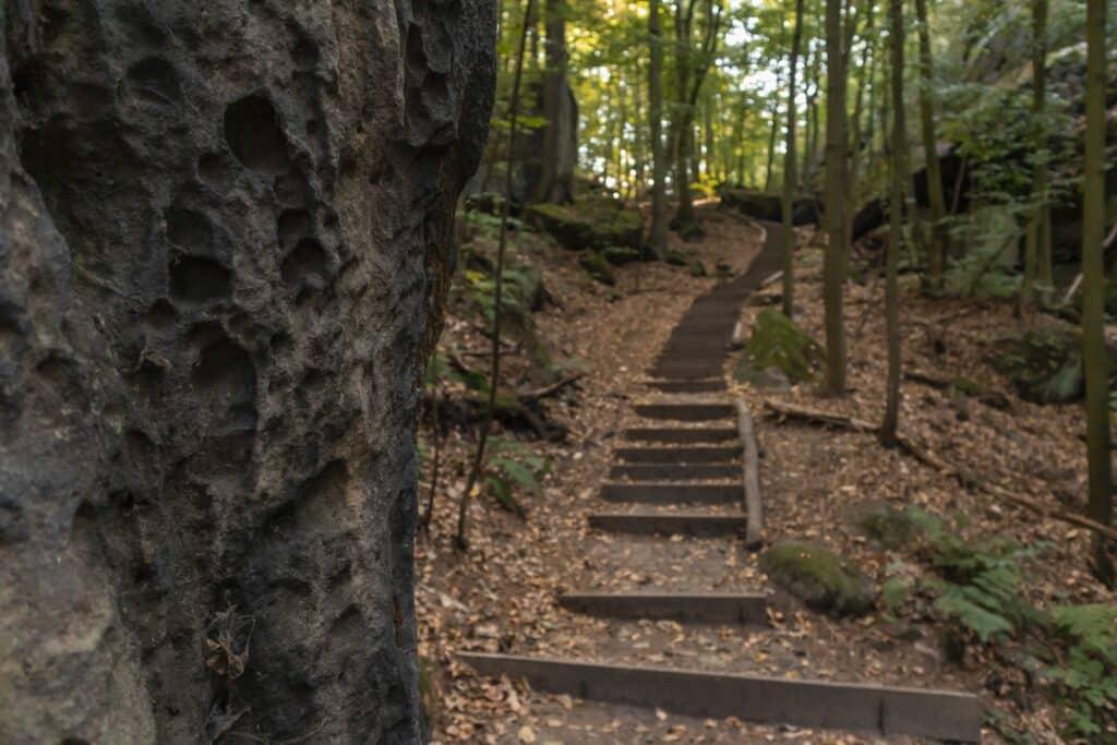 Wandern im Elbsandsteingebirge: unterwegs auf dem Malerweg im Herbst_PASSENGER X