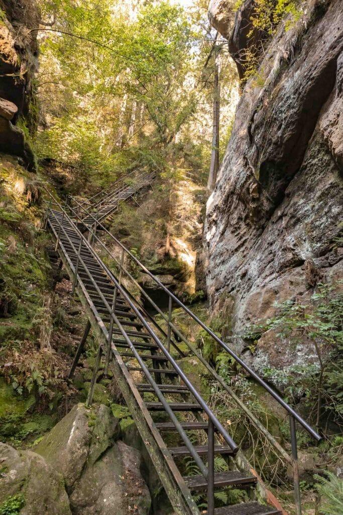 Wandern im Elbsandsteingebirge: unterwegs auf dem Malerweg_Treppen_PASSENGER X
