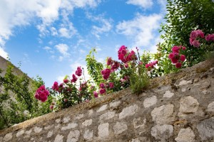 Dubrovnik Altstadt_ Dubrovnik Sehenswuerdigkeiten und-Tipps von PASSENGER X
