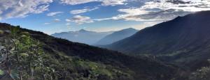 Sehenswürdigkeiten Ecuador Reise Bergnebelwald