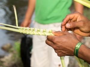 Sehenswürdigkeiten Ecuador Reise Pflanzenflaechten