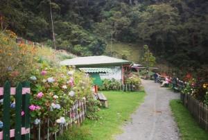 Wanderrouten-in-Kolumbien Salento